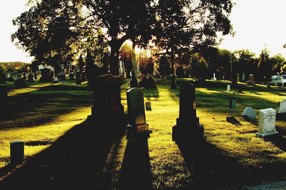 sun in the cemetery by Mark Solomon