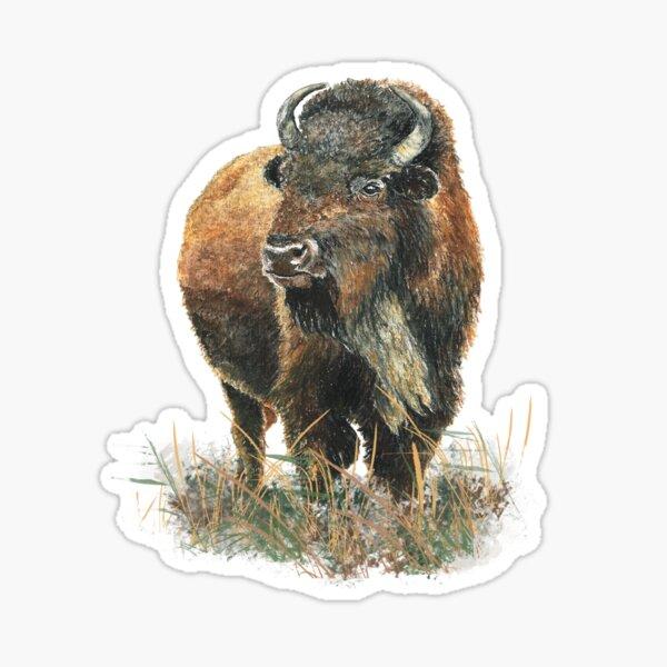 Watercolor Bison Buffalo Animal art Sticker