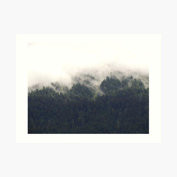 Forêt calme Impression artistique