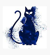 Mystery Evil Cat Photographic Print