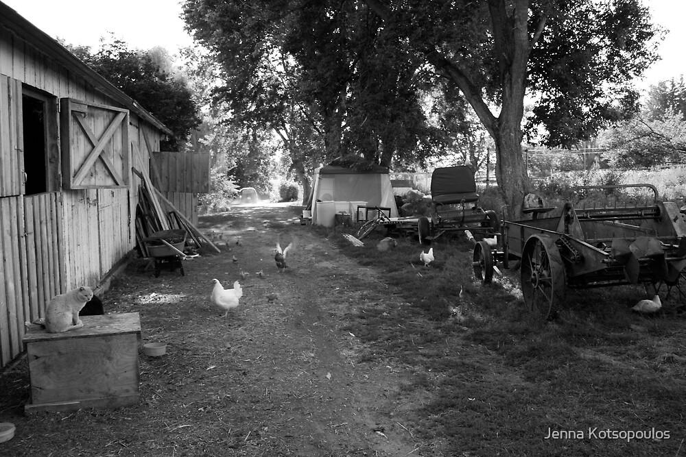 Nillo farm  by Jenna Kotsopoulos