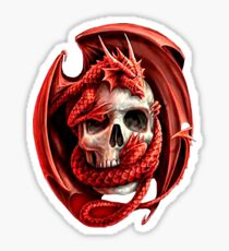 Skull and Dragon t-shirt Sticker