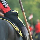 Royal Canadian Mounted Police by PrairieRose