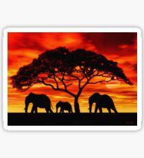 Acacia Elephant Sunset Sticker
