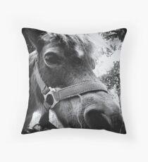 { pony express } Throw Pillow