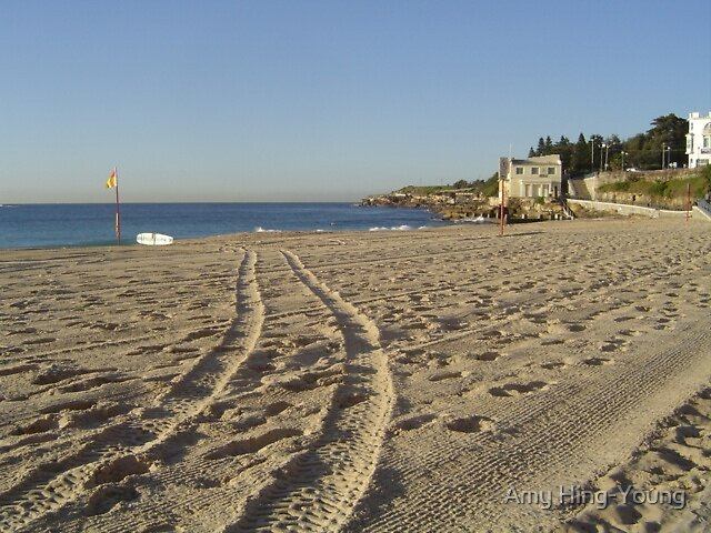Coogee Beach in Winter by Amy Hing-Young