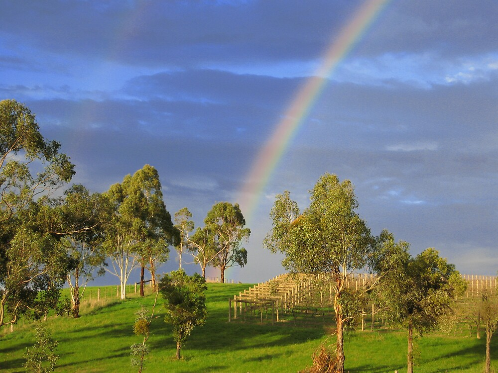 The end of the rainbow by rani
