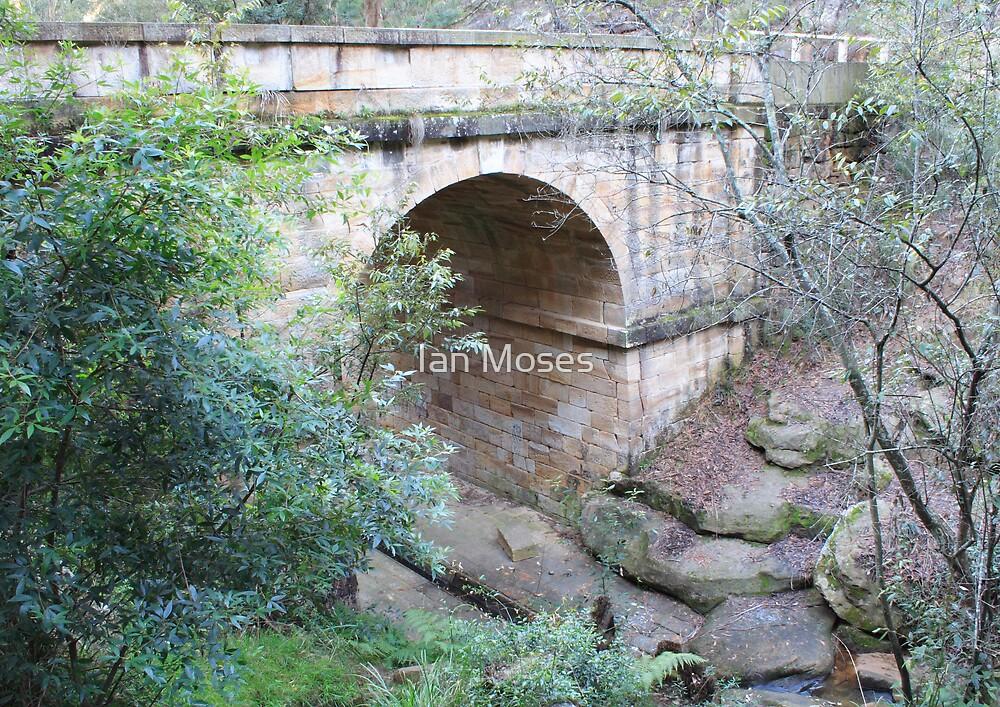 Lennox Bridge South by Ian Moses