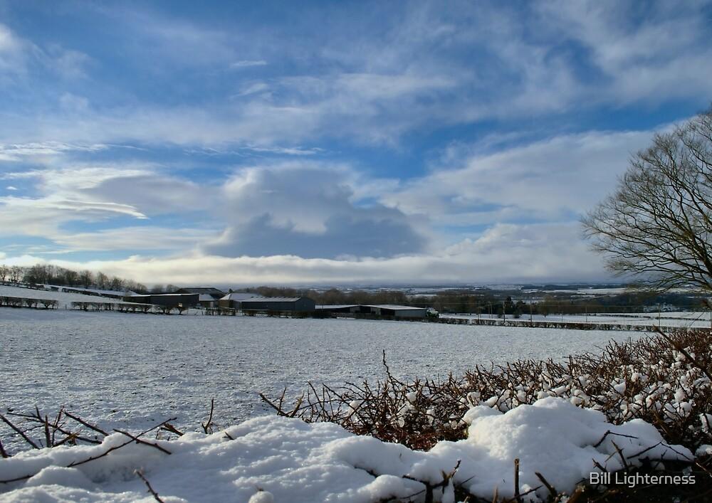 White Winter , Blue Winter by Bill Lighterness