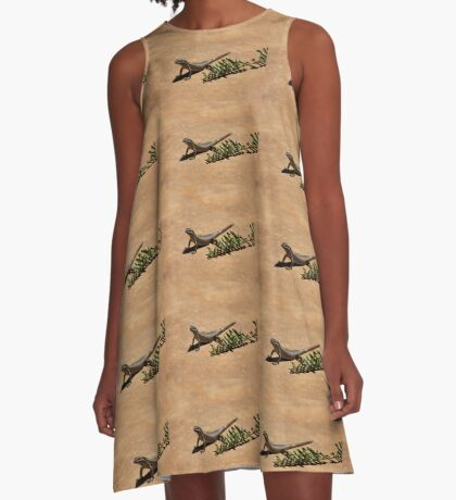 Interacting with wildlife - African Striped Skink A-Line Dress