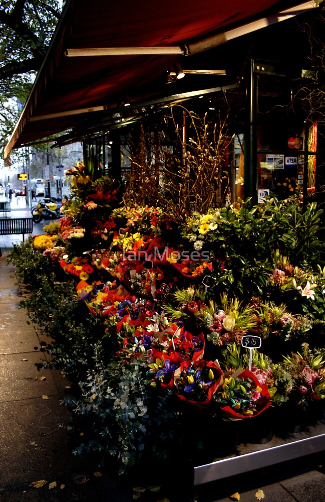 The Flower Stand by Ian Moses