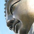 Bronze by IslandImages