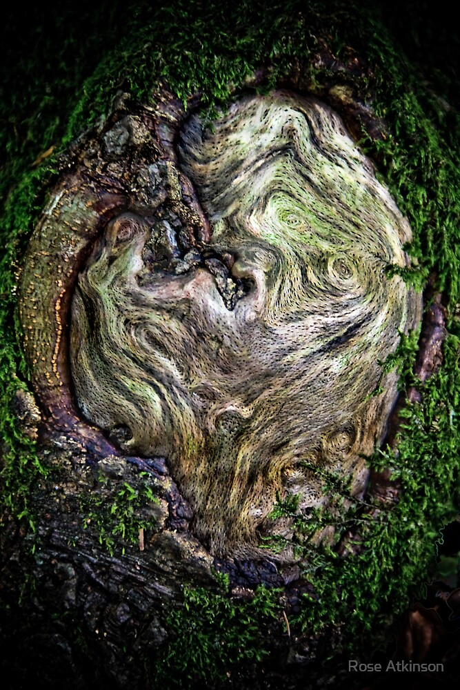 Heart of the tree by Rose Atkinson