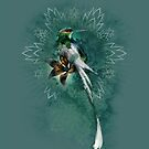 Hummingbird with Tiger Lily by James Minson