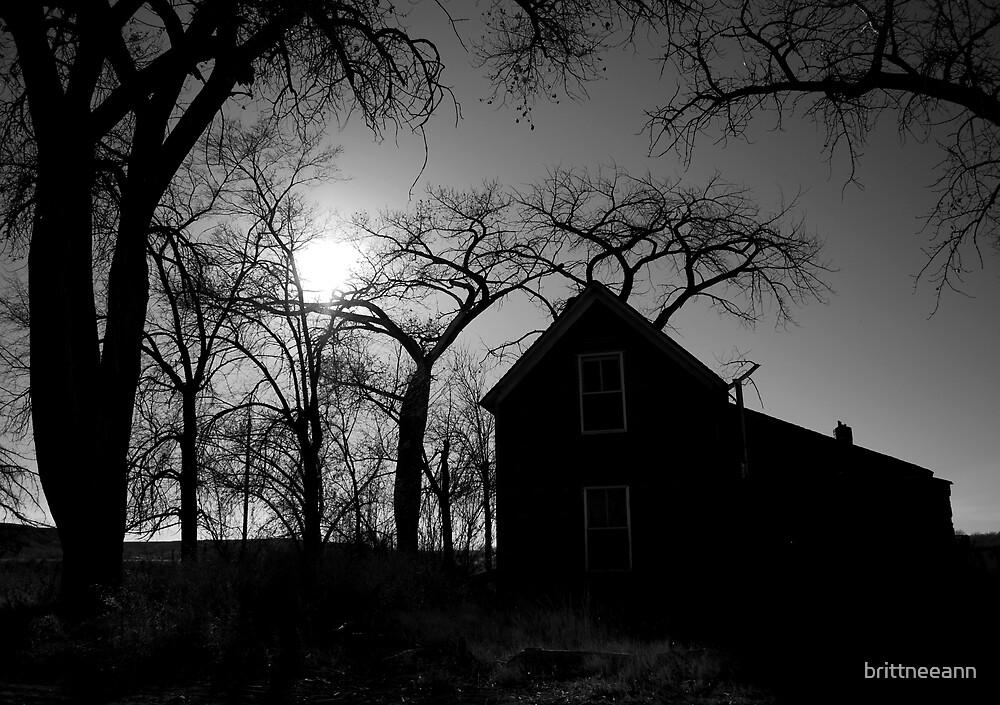 The Haunted House by brittneeann