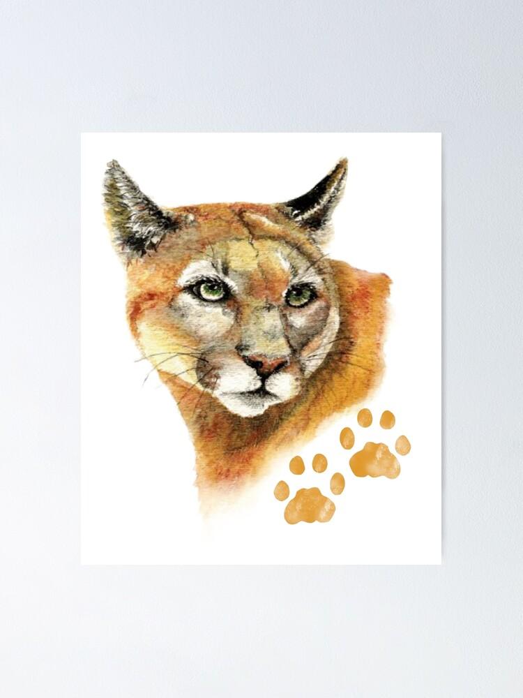Aquarell Puma, Cougar, Berglöwe Animal Poster von
