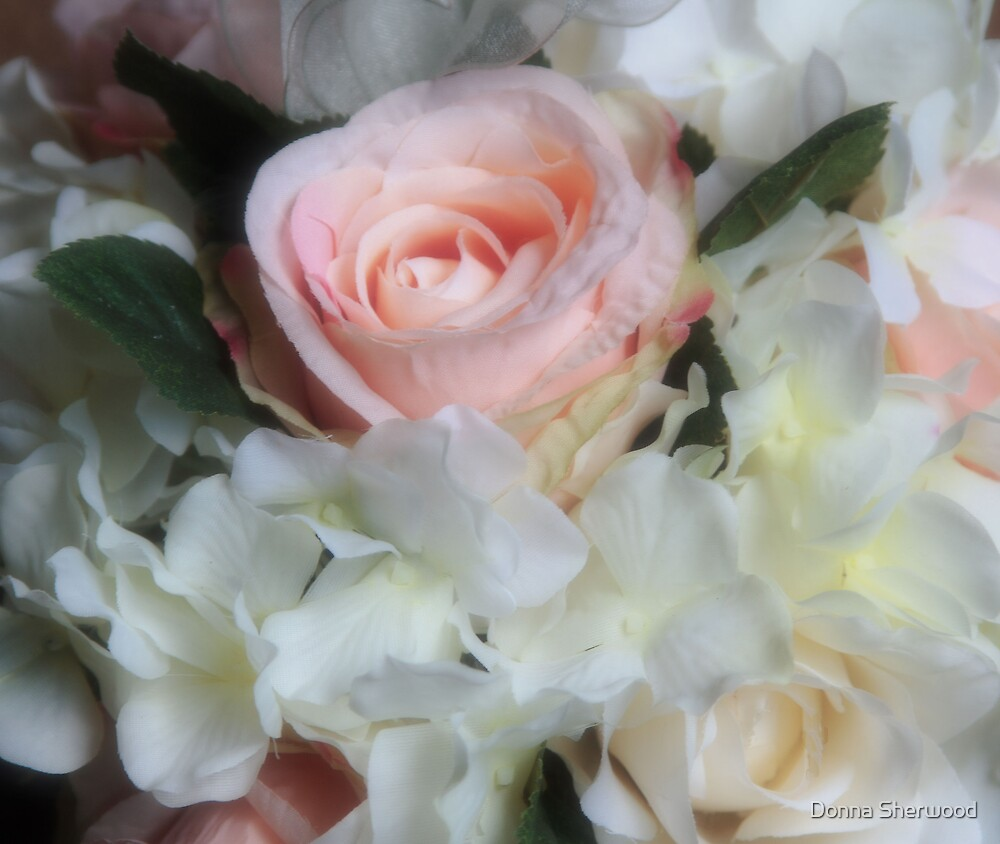 Roses by Donna Sherwood