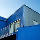 Mr. Blue by Ashleigh Robb