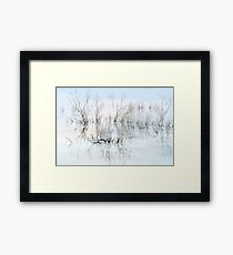 Dead plants on the shore of the Dead Sea, Israel Framed Print