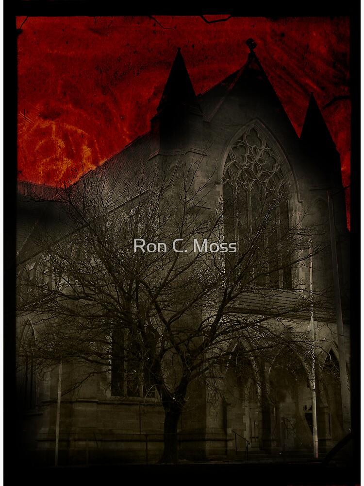 St Davids Church, Hobart by ronmoss