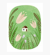 Meadow house Photographic Print