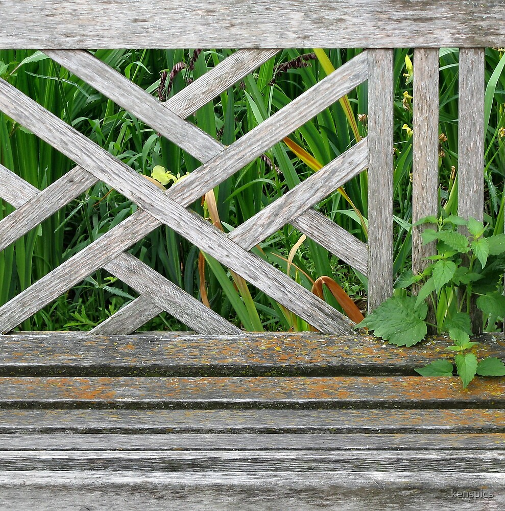 Park Bench - Detail by kenspics