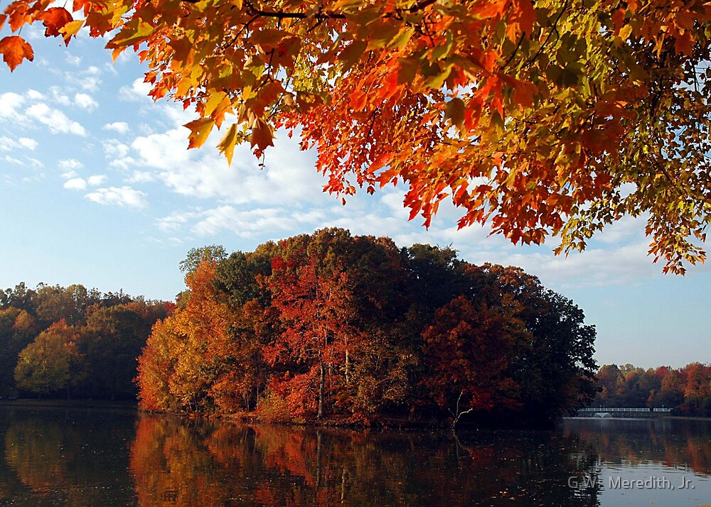 Fall colors at Allen Pond by G.W.  Meredith, Jr.