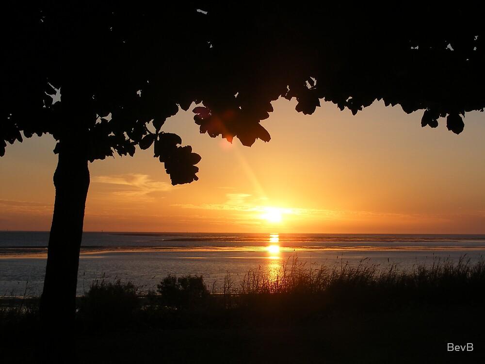Karumba Sunset by BevB