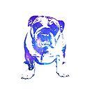 Galaxy Bulldog by skorretto