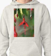 Single Wild Fuchsia Flower, Loch Na Fooey Pullover Hoodie