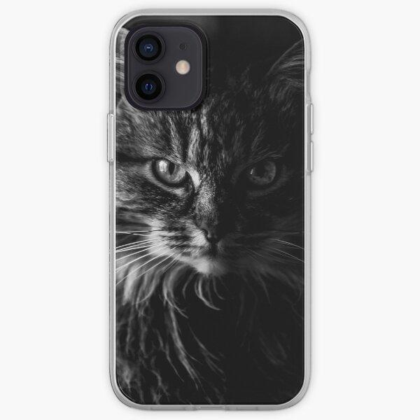 Curiosity caught the cat iPhone Soft Case
