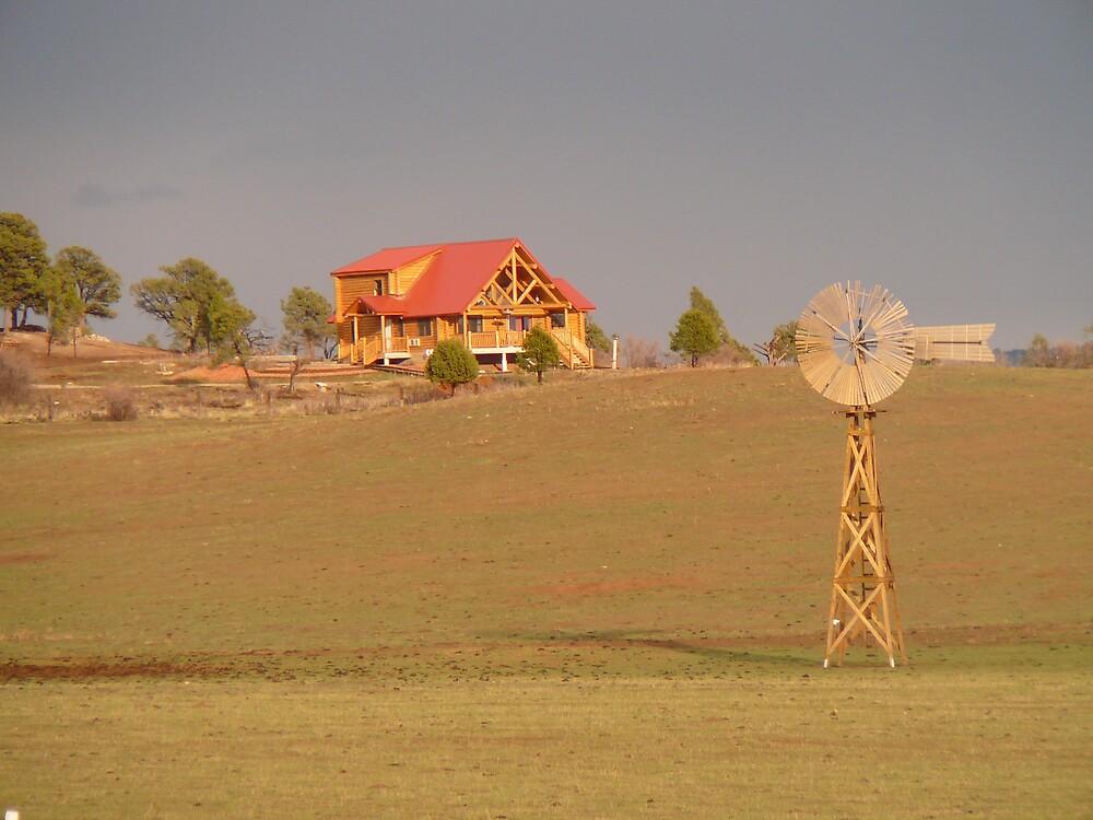 Prairie Windmill by RoaddogDesigns