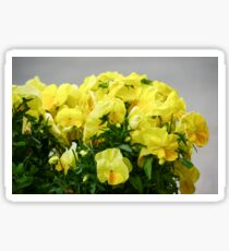 large and fresh Yellow Flower Bouquet Sticker