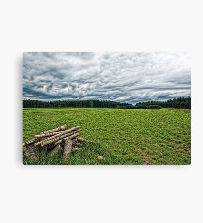 A pile of wood Canvas Print