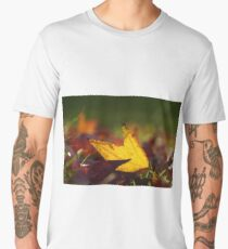 Red and Orange Autumn coloured leaves on green grass Men's Premium T-Shirt