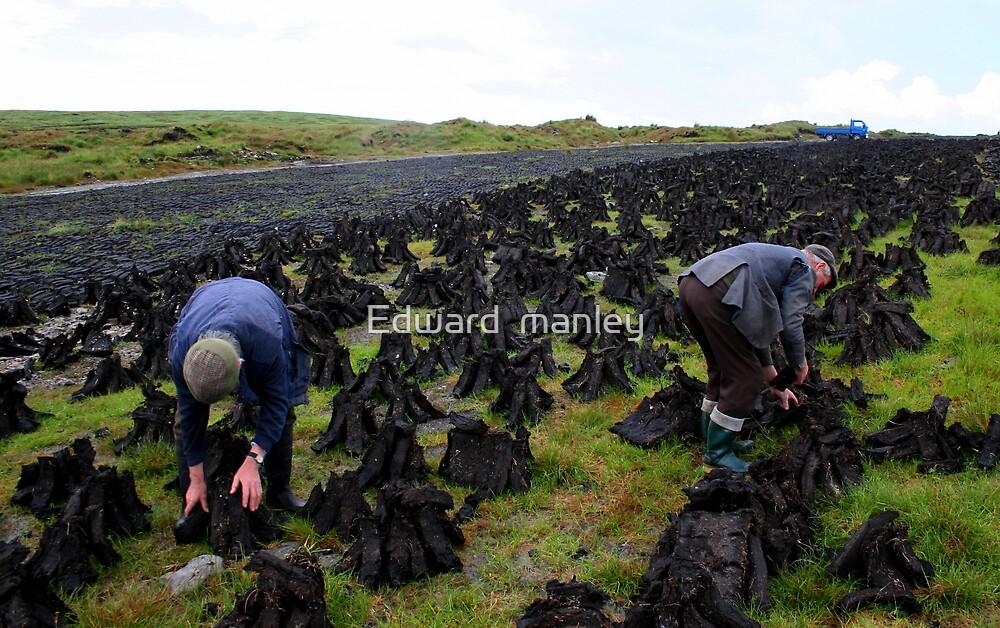 gathering turf. by Edward  manley