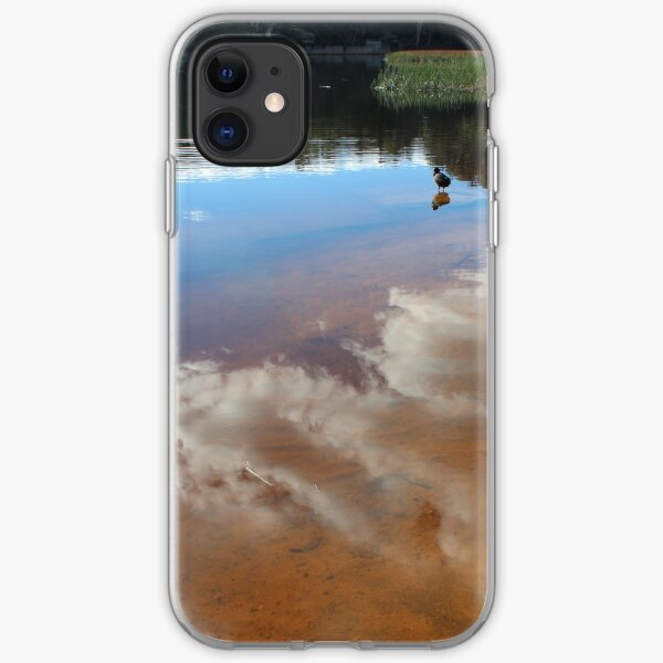Contemplating Dunn's Swamp iPhone Soft Case