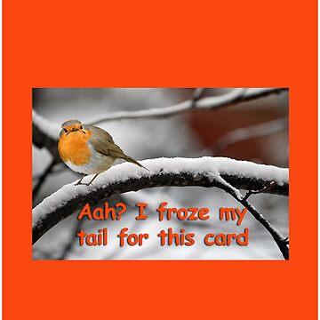 Grumpy Robin Card by noohoo