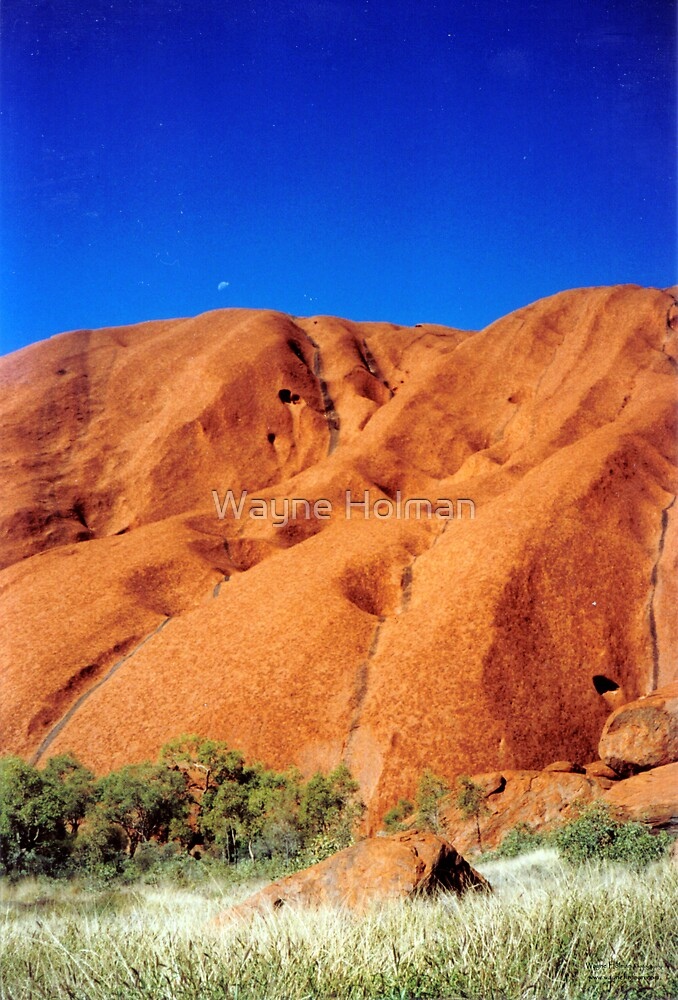 Uluru View by Wayne Holman