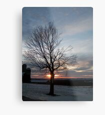 Farm Tree Metal Print