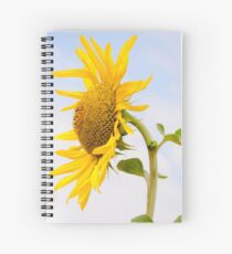 Cuaderno de espiral Sunflower king in blue sky