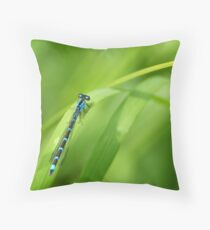 Summer Bluet Throw Pillow