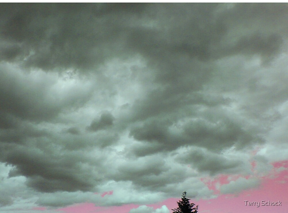 A Gathering Storm by Terry Schock