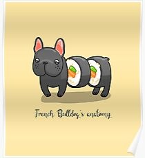 French bulldog's anatomy Poster