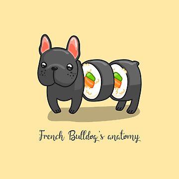 French bulldog's anatomy by dupabyte