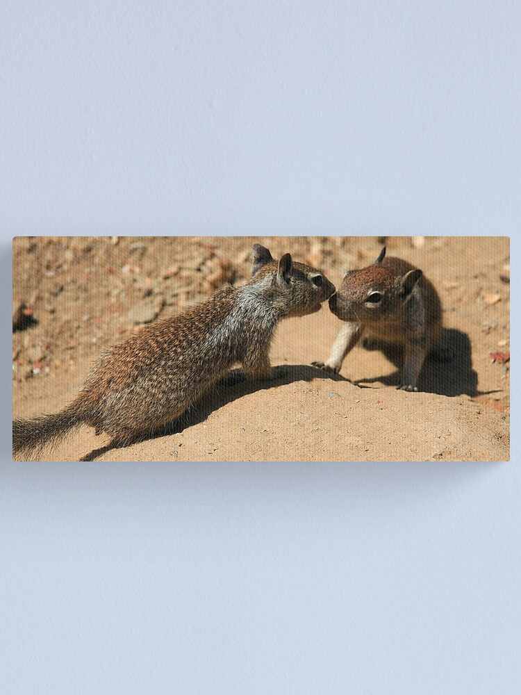 Alternate view of Hey, pssst, can I tell you a secret? Canvas Print