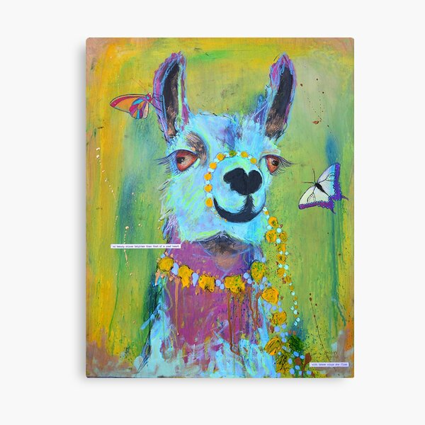 Llama for Hannah Canvas Print