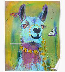 Llama for Hannah Poster