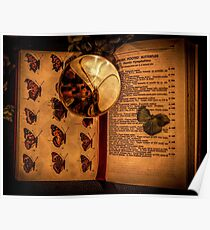Butterfly wings book under the magnifying loop Poster