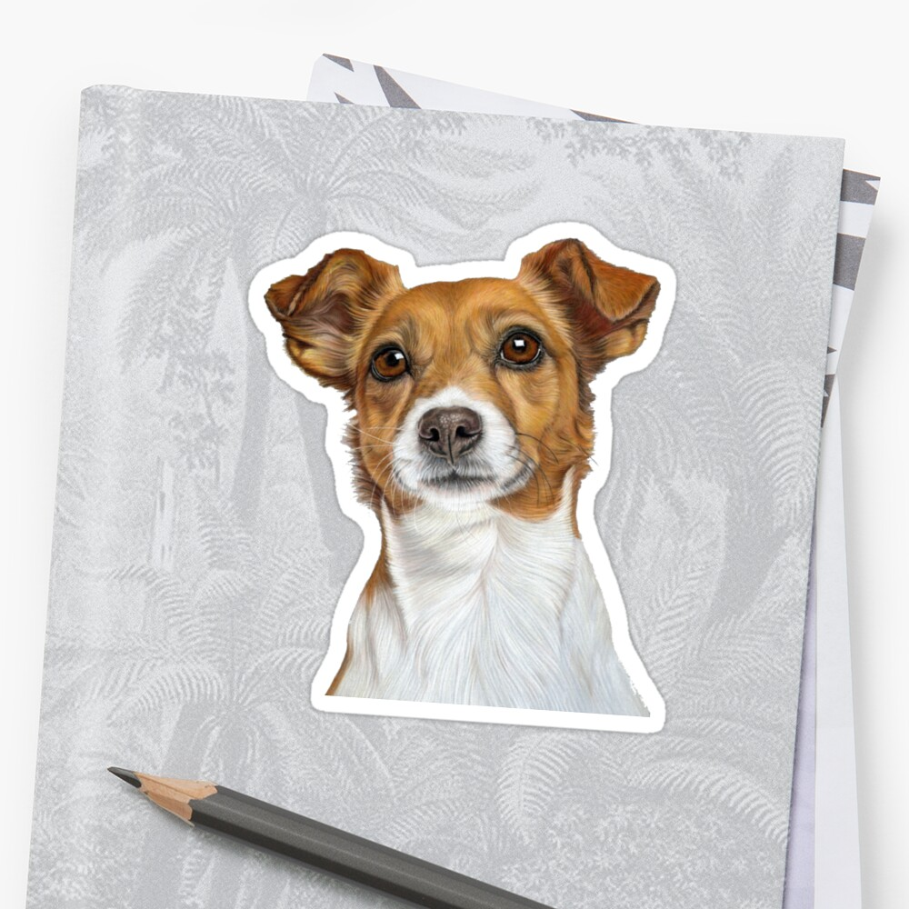 Jack Russell Terrier - Just Jack by bydonna